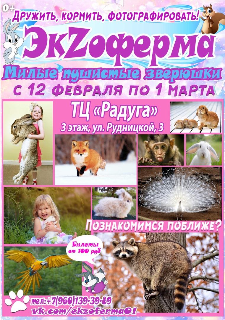 ЗОО выставка