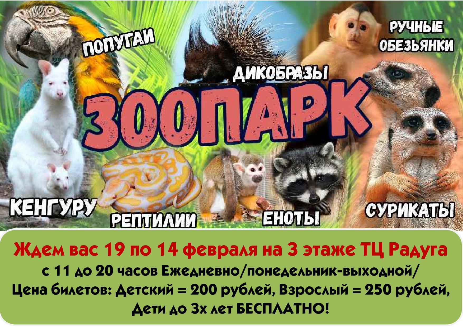в Новости Зоопарк